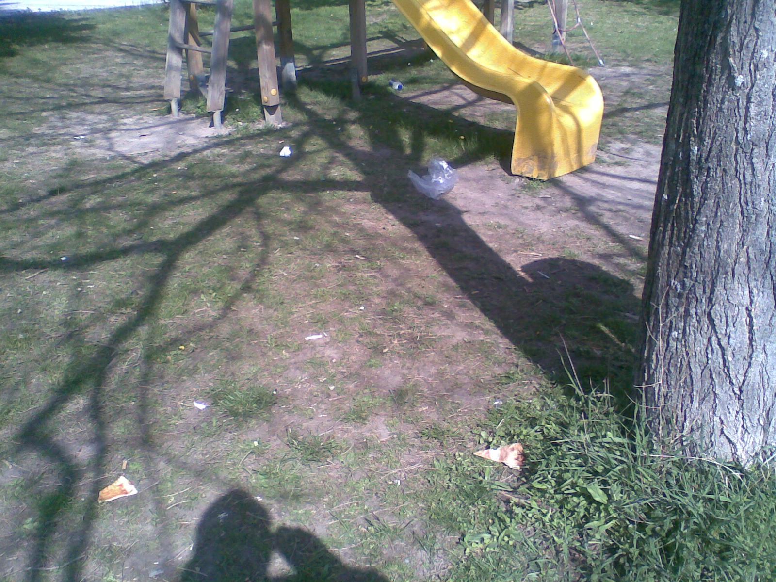 bild008_2010-04-25_10-07